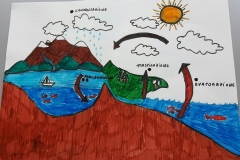 water cycle 2