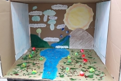 water cycle 5